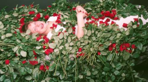 Anke....and lay me down in a bed of roses